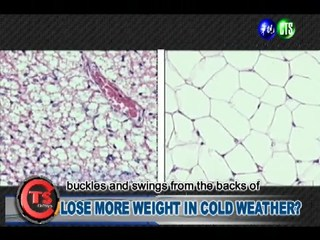 LOSE MORE WEIGHT IN COLD WEATHER?