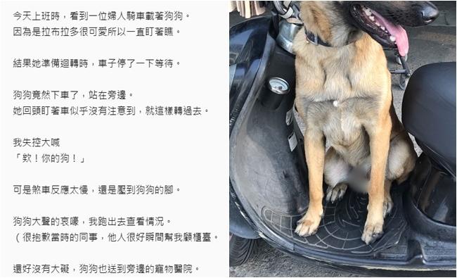 飼主機車載狗迴轉狗跳車 她目睹嚇喊:寵物別放踏板 | 華視新聞