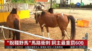 3匹馬開柵欄出走 親子餐廳挨罰!