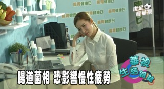 腸道菌相 恐影響慢性疲勞
