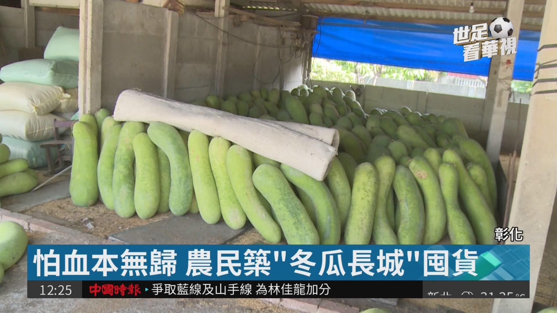 """每公斤剩3元... 農民築""""冬瓜長城""""抗戰"""