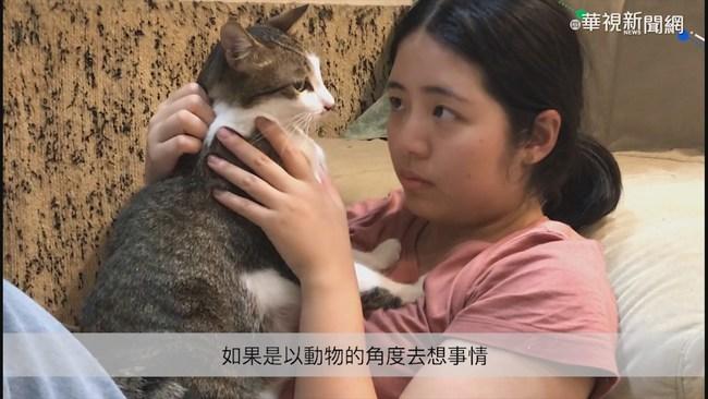 攜手夥伴共創「猫家」 她給浪浪回家的路