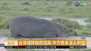台客肯亞遭河馬襲擊 傳中國大使協助