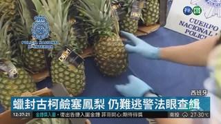 古柯鹼藏鳳梨裡運送 7毒販遭警逮捕