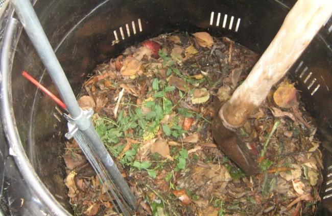 第一張廚餘養豬罰單!  雲林豬場無蒸煮設備開罰 | 華視新聞