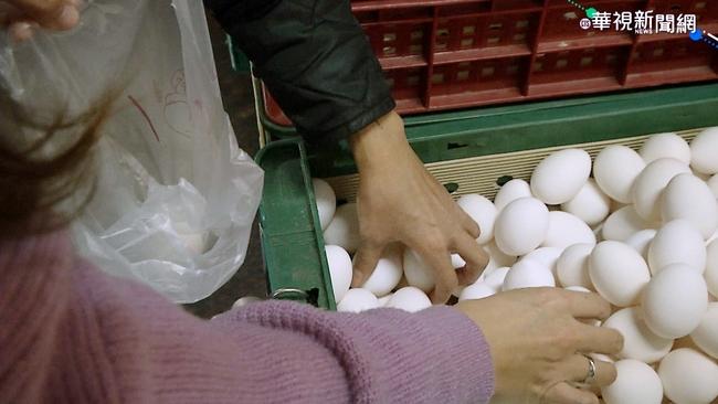 蛋價上漲!農委會:若壟斷哄抬將移公平會查處   華視新聞