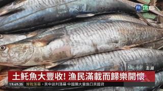 土魠魚旺季豐收 婆媽市場搶便宜