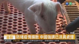 江蘇豬瘟疫情加劇 再爆1369豬病死
