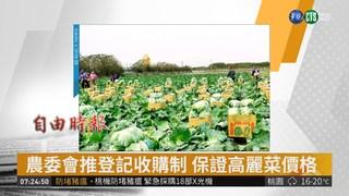 農委會推登記收購制 保證高麗菜價格