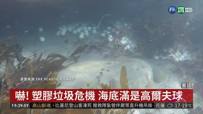搶救海洋! 美少女2年撈5萬顆小白球 | 華視新聞