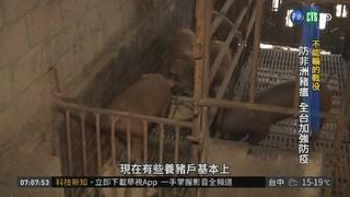 豬瘟防疫大作戰 農委會嚴密監控