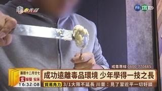 【台語新聞】毒品入侵! 青少年染毒每年恐逾千人