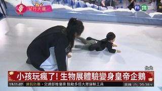 """春節哪裡遛小孩? 來華山""""生物體驗展"""""""