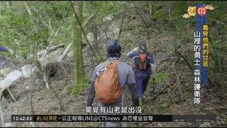 不畏山老鼠.天災 巡山員守護台灣山林