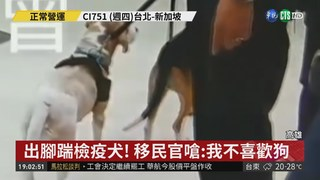 護國神犬值勤被踹 移民官嗆:不喜歡狗