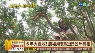 【台語新聞】今年桶柑豐收! 宜蘭果園祭好康吸人潮