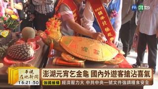 【台語新聞】澎湖元宵乞金龜 各地宮廟拚人氣