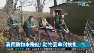 """英動物園""""人獸拔河"""" 引發虐待爭議"""