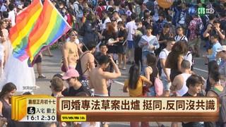 """【台語新聞】應稱""""同性共同生活法"""" 反同有異議"""
