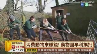 """【台語新聞】英動物園""""人獸拔河"""" 引發虐待爭議"""