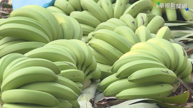 【午間搶先報】12元收購賣39元! 蕉農控中盤商剝削 | 華視新聞
