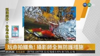 亞洲第一人 台攝影師奪水中攝影首獎