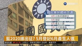 藍總統初選拍板 民調7成.黨員投票3成