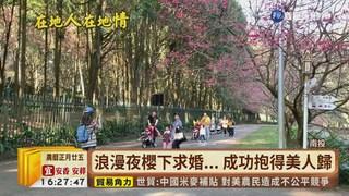 【台語新聞】彰化竹塘鄉木棉花盛開 打卡新祕境