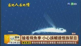 【台語新聞】蘭嶼飛魚季登場 小心誤觸達悟族禁忌