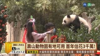【台語新聞】高雄養貓熊?! 首年預算估逾3千萬