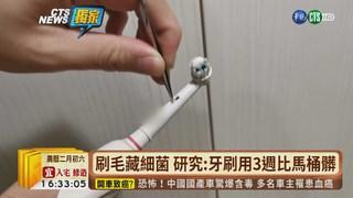 【台語新聞】刷毛藏細菌 研究:牙刷用3週比馬桶髒