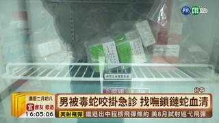 【台語新聞】男被鎖鏈蛇咬到 醫搭末班高鐵救命