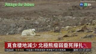巴黎氣候協議 難擋北極增溫現象