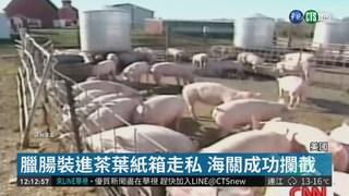 """中國走私454噸豬肉闖美 """"豬瘟""""險入侵!"""