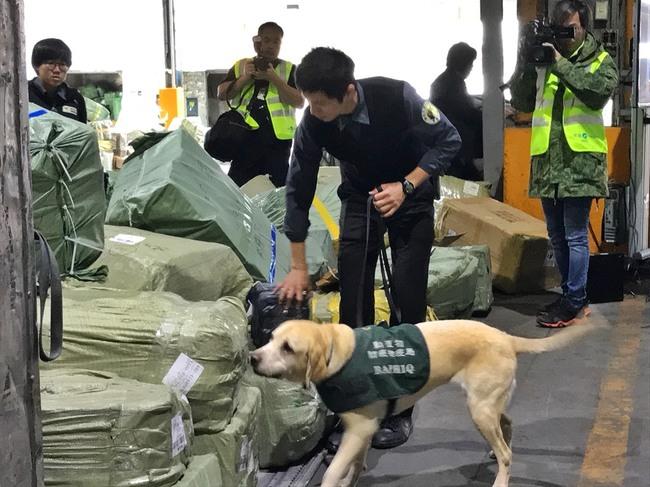 不滿被「護國神犬」聞行李 緬甸旅客打人送辦 | 華視新聞