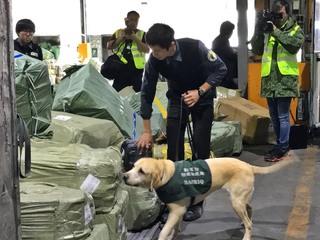 不滿被「護國神犬」聞行李 緬甸旅客打人送辦
