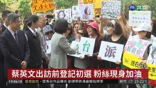 台灣需要我! 蔡英文出訪前登記初選