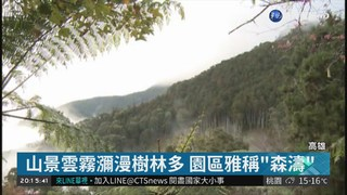 封園10年! 藤枝森林遊樂區3/31開園