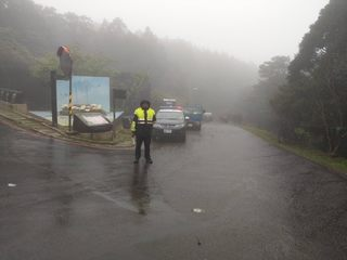 陽明山海芋季週五登場 交通管制看這裡