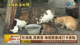 【台語新聞】百年歷史石頭厝 馬崗漁村風情迷人