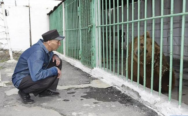 母棕熊遭判「終生監禁」 入獄與730名重刑犯為伍 | 華視新聞