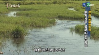 【華視台語新聞雜誌】「溼地的美麗與哀愁」割腎換電 變調的知本海岸