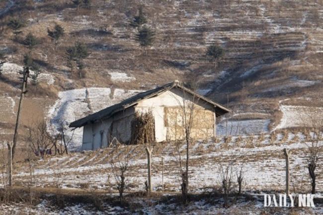 北韓也爆非洲豬瘟? 平壤驚傳豬隻大量死亡 | 華視新聞