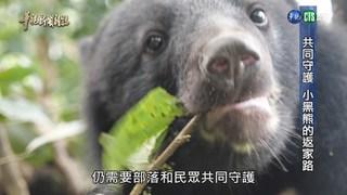【華視台語新聞雜誌】與野共存 共同守護 小黑熊的返家路