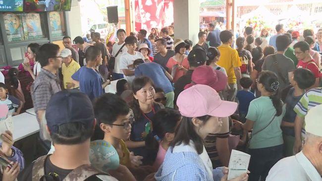 【午間搶先報】台南左鎮化石園區開幕 人車擠爆了 | 華視新聞