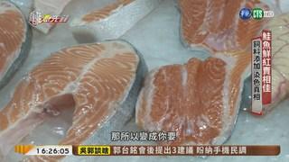 """【台語新聞】養殖鮭魚白肉變紅 揭開""""染色""""祕密"""