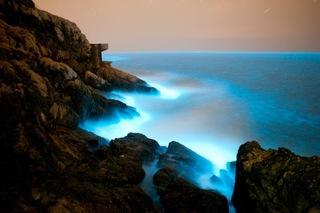 馬祖海域出現赤潮 預告藍眼淚「大爆量」