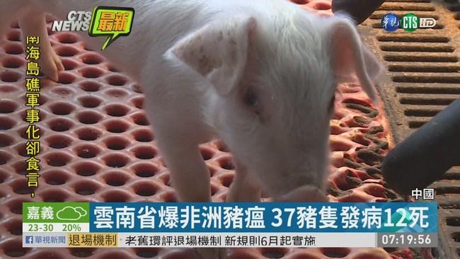 中國豬瘟又蔓延 雲南勐海縣爆新疫情 | 華視新聞