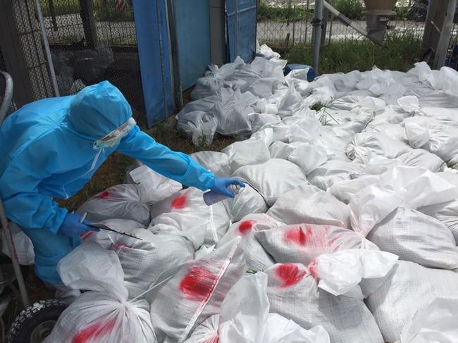 1週連3爆!彰化禽流感撲殺累計近9萬隻雞 | 華視新聞