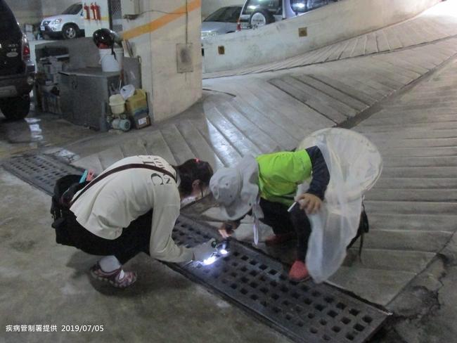 高雄本土登革熱再加1共計34例 另4例在台南 | 華視新聞